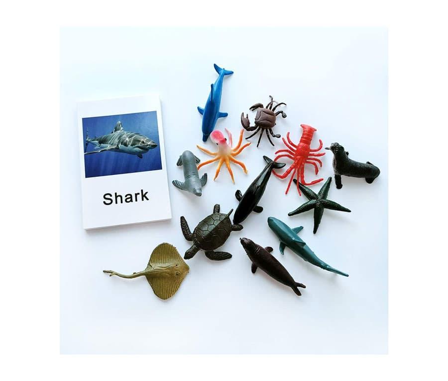Montessori Animal Match Game Cards Marine Animal